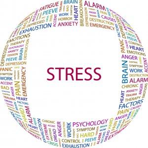 Valutazione dello stress sul lavoro
