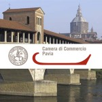 Bando Camera di Commercio