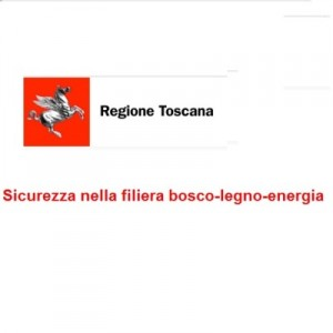 Regione toscana promozione sicurezza sul lavoro filiera for Legno arredamento trova lavoro in toscana