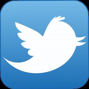 Twitter in Italia